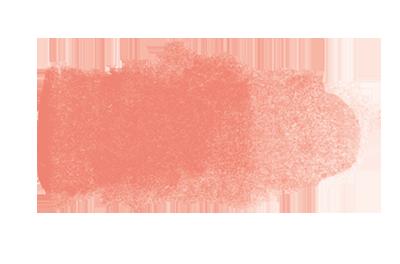 Fleischfarbe
